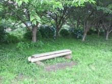 Kurikoのうた♪-2011062615320000.jpg