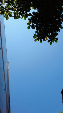 Kurikoのうた♪-2012052312090001.jpg